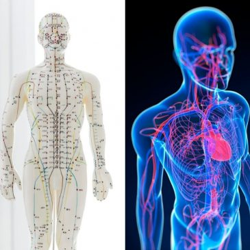 Meridian Health and Acupuncture
