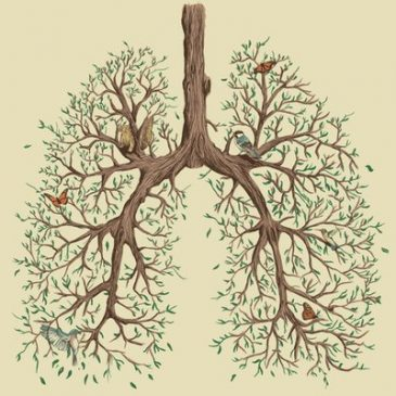 Holistic Health: Taking Care of Your Lungs
